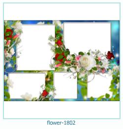 Marco de la foto de la flor 1802