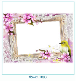 Marco de la foto de la flor 1803