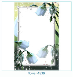 flower Photo frame 1830