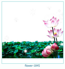 flower Photo frame 1845