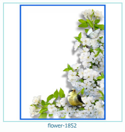 Marco de la foto de la flor 1852