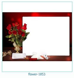 fleur Cadre photo 1853