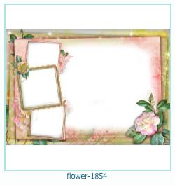fleur Cadre photo 1854