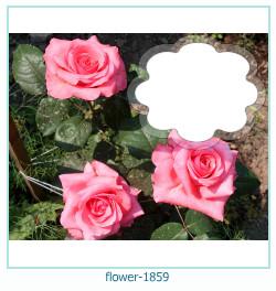 fleur Cadre photo 1859