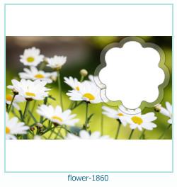फूल फोटो फ्रेम 1860