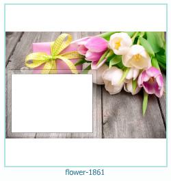fleur Cadre photo 1861