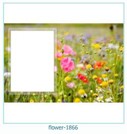 Blume Fotorahmen 1866