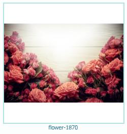 Blume Fotorahmen 1870