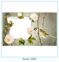 fiore Photo frame 1960