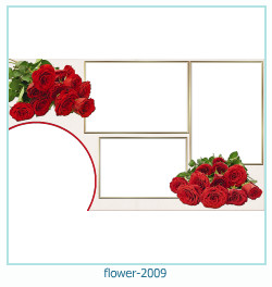 flower Photo frame 2009