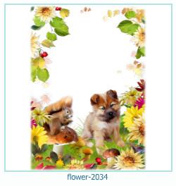 Marco de la foto de la flor 2034