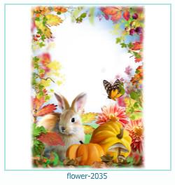 Marco de la foto de la flor 2035