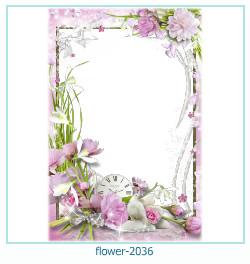 Marco de la foto de la flor 2036