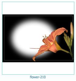 fiore Photo frame 210