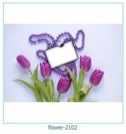 fiore Photo frame 2102
