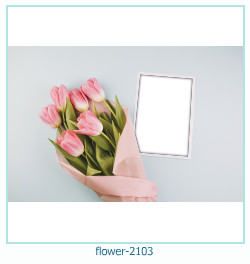 fiore Photo frame 2103