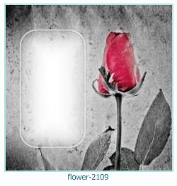 Kwiat ramki 2109
