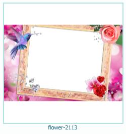 fleur Cadre photo 2113