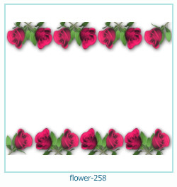 flower Photo frame 258