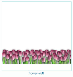 flower Photo frame 260