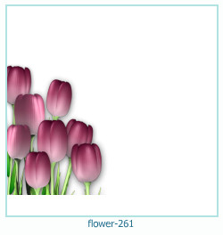 flower Photo frame 261