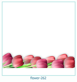 flower Photo frame 262
