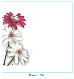 flower Photo frame 264