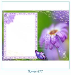 Marco de la foto de la flor 277
