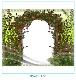 flower Photo frame 322