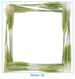 flower Photo frame 36