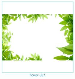 फूल फोटो फ्रेम 382