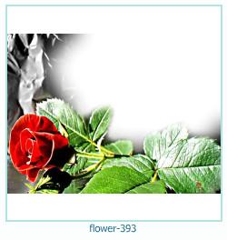 फूल फोटो फ्रेम 393