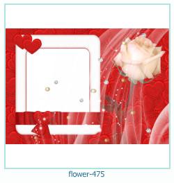 Marco de la foto de la flor 475