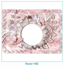 Marco de la foto de la flor 480