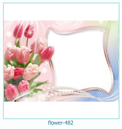 Marco de la foto de la flor 482