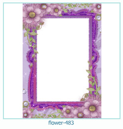 Marco de la foto de la flor 483