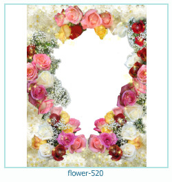flower Photo frame 520