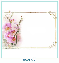 flower Photo frame 527