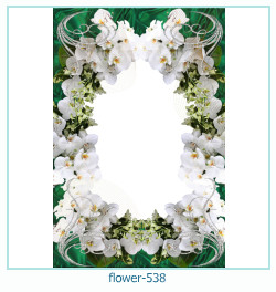 flower Photo frame 538