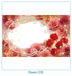 flower Photo frame 539