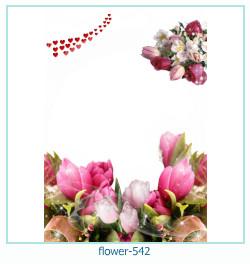 फूल फोटो फ्रेम 542