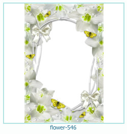 flower Photo frame 546