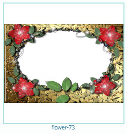 Marco de la foto de la flor 73