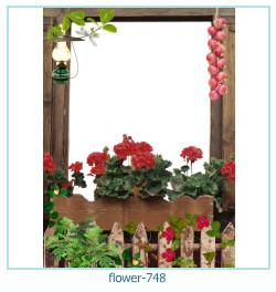 fiore Photo frame 748