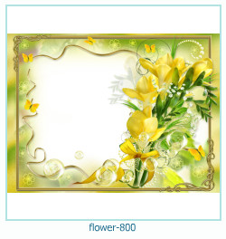flower Photo frame 800