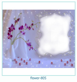flower Photo frame 805