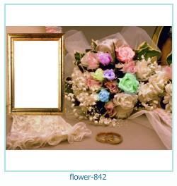 Blume Fotorahmen 842