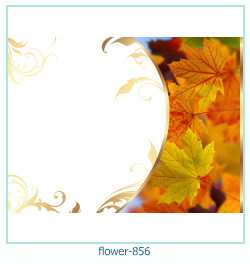 fleur Cadre photo 856