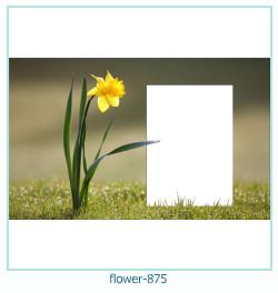 Marco de la foto de la flor 875