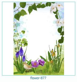 Marco de la foto de la flor 877